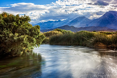 A Windy Owens (Pismopup Photography) Tags: water river owensriver easternsierra wind movement reeds mountains landscape
