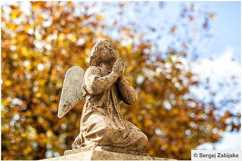 Angel.  Fotograf Sergej Zabijako, +38268129392 © Sergej Zabijako, © Promo-Montenegro, 2016. #черногория #montenegro #crnagora #promomontenegro #photosergejzabijako #photographer #photography #landscape #landscapephotography #photo #lan