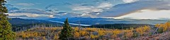 Foxview Mountain Panorama (MIKOFOX  Show Your EXIF!) Tags: canada willows bigfoxlake clouds fall fujifilmxt1 yukon sky minersrange spruce landscape hills burnarea xt1 september foxlakeburn mikofox showyourexif panorama xf18135mmf3556rlmoiswr
