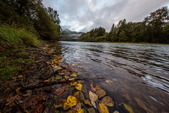 Skagit River (thefuton) Tags: nature travel washington water river skagitriver marblemount fall autumn
