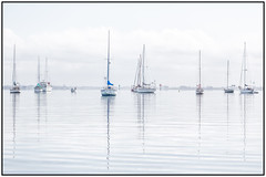 Crystal reflections (RissaJT_23) Tags: hikey highkey boats water reflections glass sails sailingboats geelong geelongwaterfront moored canon canon6d canoneos6d canon70200mm