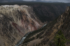 "Grand Canyon of the Yellowstone • <a style=""font-size:0.8em;"" href=""http://www.flickr.com/photos/63501323@N07/30703851502/"" target=""_blank"">View on Flickr</a>"
