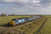 37419 passes Stracey Arms working 2P17 1117 Great Yarmouth - Norwich 11/11/2016 (Paul-Green) Tags: norfolk stracey arms a47 acle straight windmill fields clouds bright sun class 37 374 37419 37422 english electric type 3 diesel engine locomotive drs direct rail services aga abellio greater anglia passenger train service rails stock lhcs flickr canon 7d mk2 1117 gt great yarmouth norwich november 2016 outdoors mixture uk gb railways 2p17
