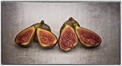 Figs (Ian Rosenthal) Tags: fig
