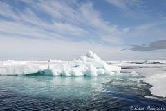 Arctic Pack Ice (Robert Horne Wildlife Photography) Tags: arcticpackice packice driftice seaice ice arctic arcticcircle svalbard arcticocean iceberg