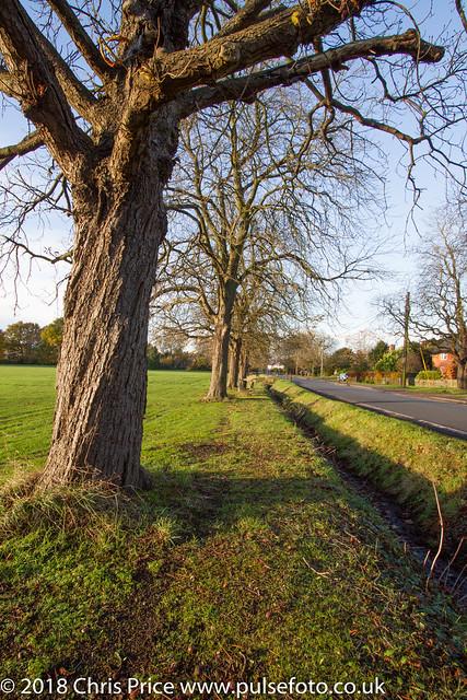 Sherfield On Loddon