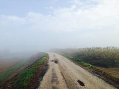Iph501 (gzammarchi) Tags: italia paesaggio natura pianura campagna ravenna sanmarco nuvola strada nebbia