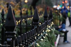 Madison Square Park (melike erkan) Tags: nyc holidays xmas christmas bokeh film filmgrain