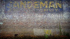 'Sandeman sherry' - #Brussels #Belgium #advertising #Sandeman #visitbrussels #welovebrussels #hellhole #sherry #urban #city #street (Ronald's Photo Factory - www.ronaldgiebel.eu) Tags: instagramapp square squareformat iphoneography uploaded:by=instagram brussels bruxelles brussel belgium advertising sandeman sherry photography wwwronaldgiebeleu samsung s6 street urban city