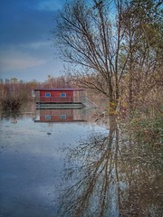 Durante la Piena......... (ilfotografodellapausapranzo1) Tags: natura fiumepo boat riflessi riflesso pienadelpo