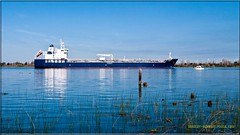 Louis P _2539 LR (bradleybennett) Tags: ship shipping cargo tanker tank river delta boat port channel steam large crew crane bay ocean dock pier blue red water line bulkcarrier louis p
