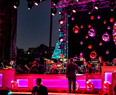 2016.12.01 Christmas Tree Lighting Ceremony, White House, Washington, DC USA 09284