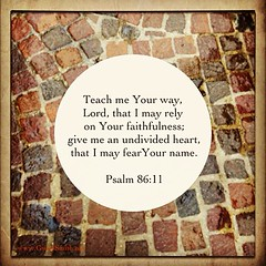 Lord, please teach me your way and give me an undivided heart. Amen