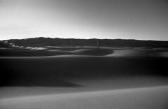 Libyen Umm al Ma Agfa Scala 200 (Steiner Walter) Tags: travel bw sahara nikon desert f100 ktm adventure motorbike libya weiss schwarz wste enduro tuareg motorrad f2as libyen beduinen