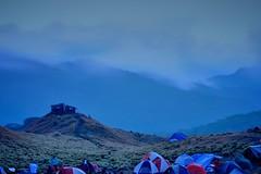 Mt. Pulag Campsite (pandarome) Tags: mountain nature hiking philippines summit campsite benguet mtpulag kabayan