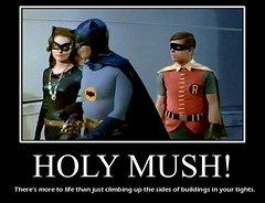 "BATMAN 1966 :  ""HOLY MUSH!"" (DarkJediKnight) Tags: classic robin television poster humor fake 1966 batman parody spoof catwoman motivational julienewmar adamwest burtward"