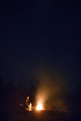 under the stars (Arina Borevich) Tags: sky color men nature night digital canon stars landscape fire photography russia smoke traveller campfire bonfire russian karelia somebody   notrh 550d  canonefs1755mmf28isusm canon1755mm  canoneos550d
