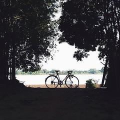 Missing Mekong Rider ;— คิดถึงการปั่นริมแม่น้ำโขง เราชอบมองแม่น้ำโขงทั้งตอนกลางวันและกลางคืน เราชอบที่แม่น้ำสายยาวมากนี้เต็มไปด้วยเรื่องราวและวิถีชีวิต เหมือนกำลังนั่งดูคุณปู่คนหนึ่งกำลังรดน้ำต้นไม้ เป็นการมองที่ยิ้มสบายใจ ไม่ต้องคิดถึงอะไรและคิดถึงใคร คิ