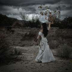 Woman to Tree (CrystallynnH) Tags: autumn woman tree leaves greek desert crystal daphne hancock texturesquared flickrandroidapp:filter=none crystaldickersonhancock