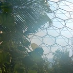 Eden Project 2003