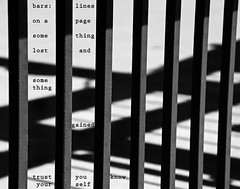 Bars & Shadows (Don Iannone) Tags: blackandwhite lines bars poetry imagepoetry abstractphoto poeticimage