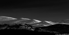 Curves, lines & light (Pewald) Tags: winter light sunset mountain snow nature lines norway landscape blackwhite