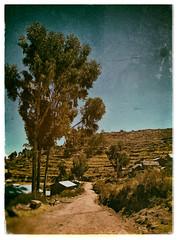 Llachon (Guillermo Perez Santos) Tags: titicaca landscape perú llachon {vision}:{sky}=0501 {vision}:{outdoor}=0887