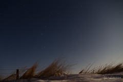 Cold night (jaimi.lammers) Tags: ranch snow grass night fence stars pasture