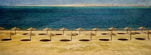 Seascape. Red Sea.