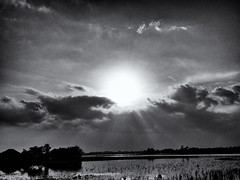 Skyscape (Kingshuk Mondal) Tags: cloud landscape blackwhite kingshuk sundarban kingshukmondal