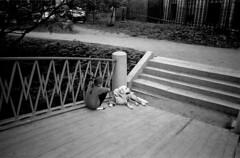 Таврический Сад, С-Петербург  май 2015 / St. Petersburg May 2015 (ira_buravkova) Tags: 2 bw stpetersburg mju russia streetphotography olympus tauridegarden