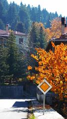 P1150631 (omirou56) Tags:        greece outdoor 169ratio panasoniclumixdmctz40