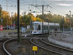 Linie 704 am Sdpark in Dsseldorf (KL57Foto) Tags: olympus pen pm2 dsseldorf oberbilk wersten kl57foto oktober 2016 park parkanlage herbst nrw germany rheinland volksgarten bilk dsseldorfbilk