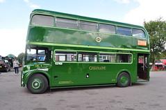 1957 Leyland Routemaster Coach prototype CRL4 SLT59 London Bus Company (Richard.Crockett 64) Tags: leyland routemaster crl4 rmc4 slt59 easterncoachworks prototype coach londontransport greenline bus omnibus passengervehicle commercialvehicle londonbuscompany numberisandoddones busevent northweald station essex 2016 eppingongarrailway