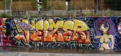 graffiti amsterdam (wojofoto) Tags: amsterdam graffiti streetart nederland netherland holland wojofoto wolfgangjosten ndsm teizer