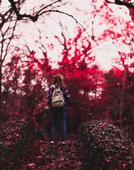 Lost. (Elliot Tratt) Tags: fine art fineart cornwall autumn tree trees girl jean jeans backpack nature natural unnatural edit edited canon eos 5dmark2 5dm2 2016 bridge bridges lost concept conceptual teen teenage