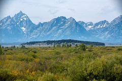 Willow Flats (gunigantip) Tags: moran wyoming unitedstates gtnp grandtetonnationalpark grandtetons tetons nationalpark willowflats overlook jacksonlakelodge mountains scenic landscape