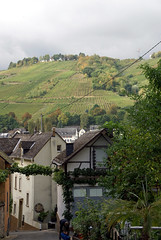 Zell, Zeller Kehr (HEN-Magonza) Tags: zell mosel moselle rheinlandpfalz rhinelandpalatinate deutschland germany