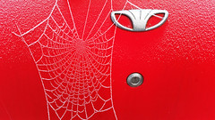 Spiderman vs Batman (RainerSchuetz) Tags: spiderweb hoarfrost rime superheroes marvel daewoo
