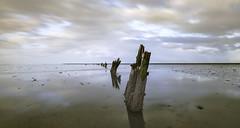 Waar ik graag mag zijn, 'Op 't Wad'... uitgeroepen tot het mooiste natuurgebied van Nederland. (Jan Wedema) Tags: mooistenatuurgebiedvannederland waddengebied winnaar winner landschap waddenkust jeeeweee pro landscape photographer fotograaf jan wedema janwedema mudflat2016winner peazemerlannen