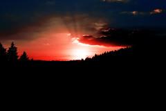 hellfire (Landesfahrer) Tags: hölle feuer kunst wald