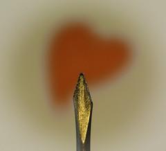 Little arrow for Macro Monday (Kat-i) Tags: macromondays arrow heart pfeil herz macro makro rot red spitze