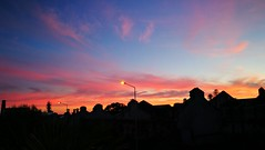 Today i was ocupied in myparents house so  couldn't go take some pics but here is the registery of this Marvellus Sunset today . In So Miguel Island ,Azores.. (MiguelSantosi) Tags: igsunsets sunsetpics sunsetshot sunsetpic sunsetphotography sunsetcaptures sunsetscape sunsetshots sunsetlovers sunset sunscape sunsetphoto sunsetporn pordosol pordosollindo pordosolfotografia fimdodia endofday saomiguelisland acores azores entardecer fireinthesky fogonoceu sky skyscapes skyporn skycaptures cloud cloudscape cloudporn landscape landscapelovers landscapecaptures