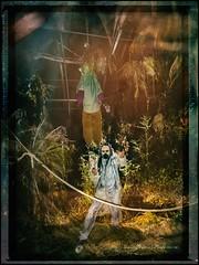 2016 10 31 De Miedo en La Muela 022 (Unos y Ceros) Tags: nochedebrujas miedo canguelo pasajedelterror espanto susto acojone pánico horror tembleque pavor sobresalto angustias sorpresa tormento congoja zozobra intranquilidad ansiedad apuro pesadilla penalidad reconcomio desazón resquemor angustia alucinaciones nochedeánimas trucotrato disfraces aviaparklamuela fiestadelanoche zaragoza aragón textura pinturaluz unosyceros 2016 lightroom nikond700 zaragonés zaragoneses europa unióneuropea ue invarietateconcordia