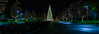 the holiday bowl (pbo31) Tags: california nikon d810 night dark black eastbay december 2016 boury pbo31 holidays christmas lowlight christmastree bishopranch contracostacounty panoramic large stitched panorama reflection tree season color lightstream row