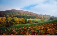 Herbst Einberger Schweiz