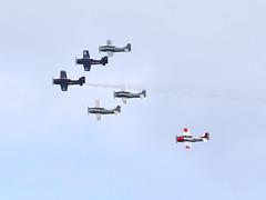 T28 Trojan Horsemen Team (Ennio Fratini) Tags: florida stuart stuartairshow2016 t28trojan usa airshow aircraft airplane unitedstates