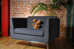 teddy bear therapy psychology (jancamilleri) Tags: brick gardens greyy individualevent livingroom loneliness mentaldisorder mentalillness metallegs nature oakfloor objectsequipment oneperson plant red singleobject sofa taillight teddybear therapy charis greenplant