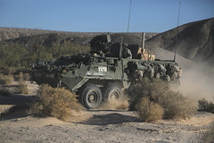 161108-A-IS340-002 (Operations Group, National Training Center) Tags: stryker mountain army ntc fortirwin javelin spczacharynstanley 1stbrigadecombatteam 1id calif usa