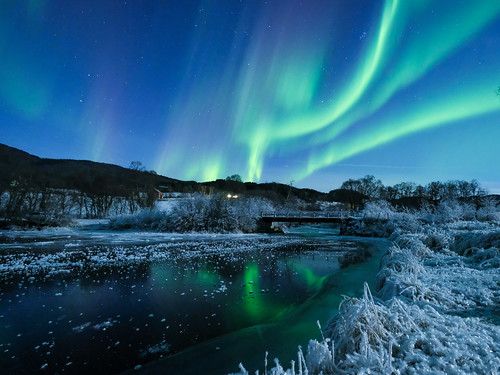 """Aurora in Straumsbotn, • <a style=""""font-size:0.8em;"""" href=""""http://www.flickr.com/photos/127903822@N03/30929324975/"""" target=""""_blank"""">View on Flickr</a>"""